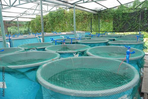 Leinwanddruck Bild Agriculture aquaculture farm
