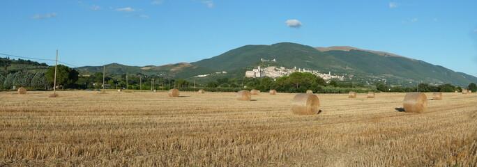 Assisi Panoramica
