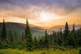 Fototapeta góra - natura - Wysokie Góry