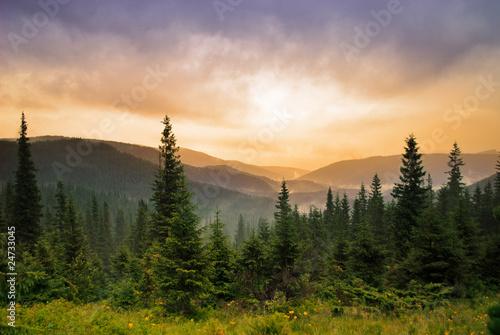 Landscape with fog © oksix