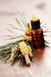 fir tree essential oil