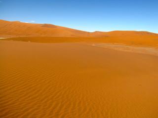 desert and sand dunes