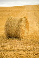 Golden hay bale in the countryside