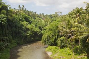 River in Bali