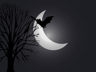 Spooky night Halloween vector