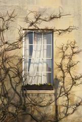 Window in Downing College Cambridge University.