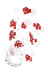 Red currant with an ice