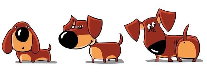 three funny dachshunds
