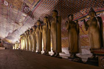 view of Dambulla - Cave temple - Sri Lanka