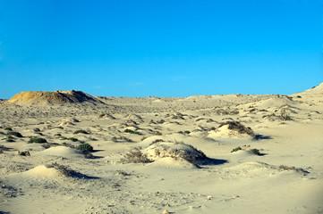 Sahara Desert, Western Sahara