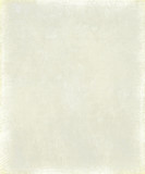 Pale grey textured smudge background poster