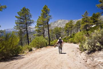 Sierra de Gredos. Collado de la Centenera