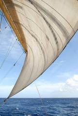 Sail and ocean