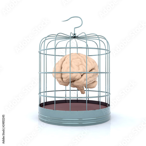 brain inside the birdcage