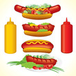 Big Hot-Dog set-all vector objects separated