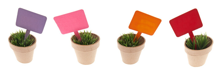 Pots of Grass with Vibrant Blank Signs