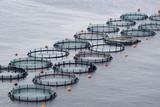 Aquaculture poster