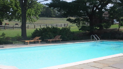 estate swimming pool  water slide diving board horses pasture