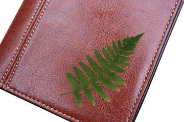 Agenda - Congrès Ecologie -Forestation