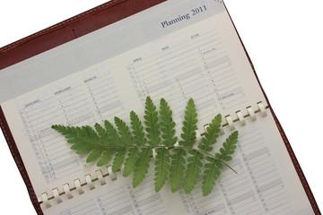 Reforestation - Ecologie - Agenda Année 2011
