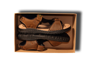 brown shoe in box