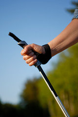 Nordicwalking Stick
