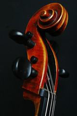 Neck of Cello