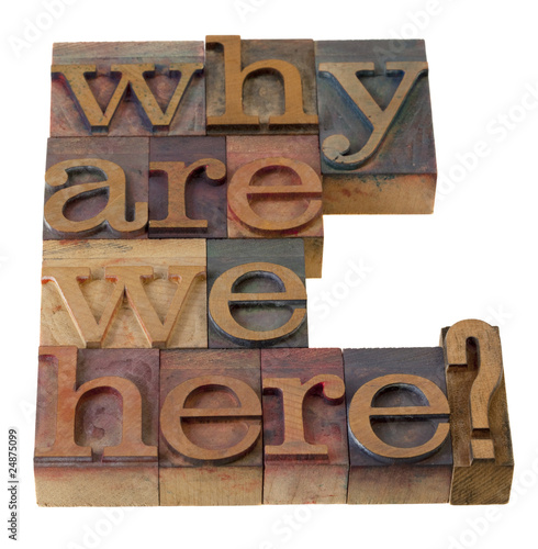 why are we here question