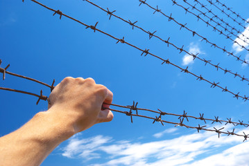 Hand of prison and sky background.