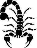 Scorpio tattoo poster
