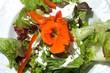 Gemischter Salat mit essbarer Blüte