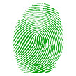 Green fingerprint vector