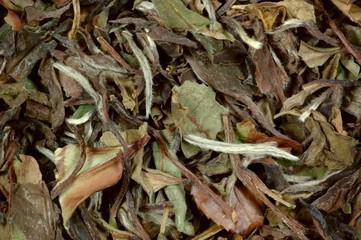 China Pai Mu Tan - Weißer Tee