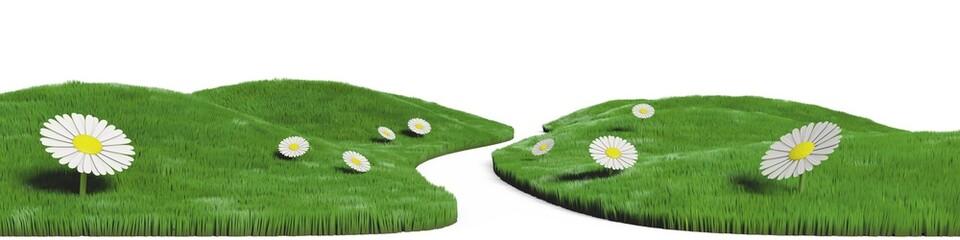 Chemin dans une prairie fleurie de marguerites, paysage 3d