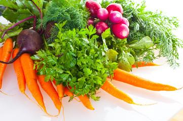 garden radish, carrots and beet.
