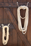 lasso ropes at stable door