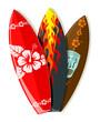 Vector surf boards