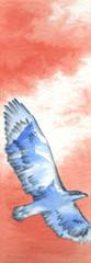 Aquila che vola con immagine di monti sulle ali