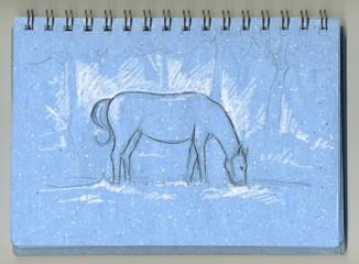 Taqquino azzurro con schizzo di cavallo