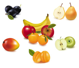 Group of fruit. Vector.