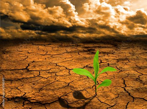 Leinwandbild Motiv Global warming concept