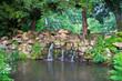 Waterfall in the green wood.