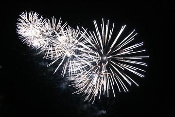 feux artifices fete lac annecy 2010