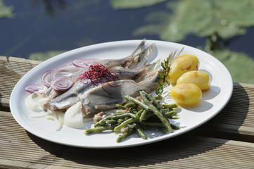 frische Matjesfilets, Fisch, Fischgericht