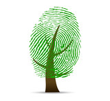 Fototapety Fingerprint tree vector