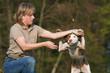 Hundetraining mit Belohnung