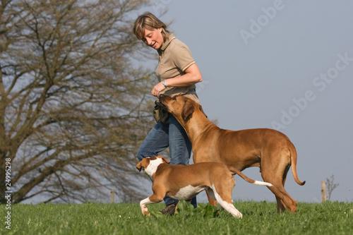Frau mit zwei Hunden auf der Wiese