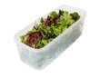 Salad Leaves in Storage Container