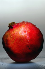 pomegranate stands on the wet gray background