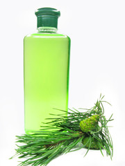 shower gel bottle with fir extract